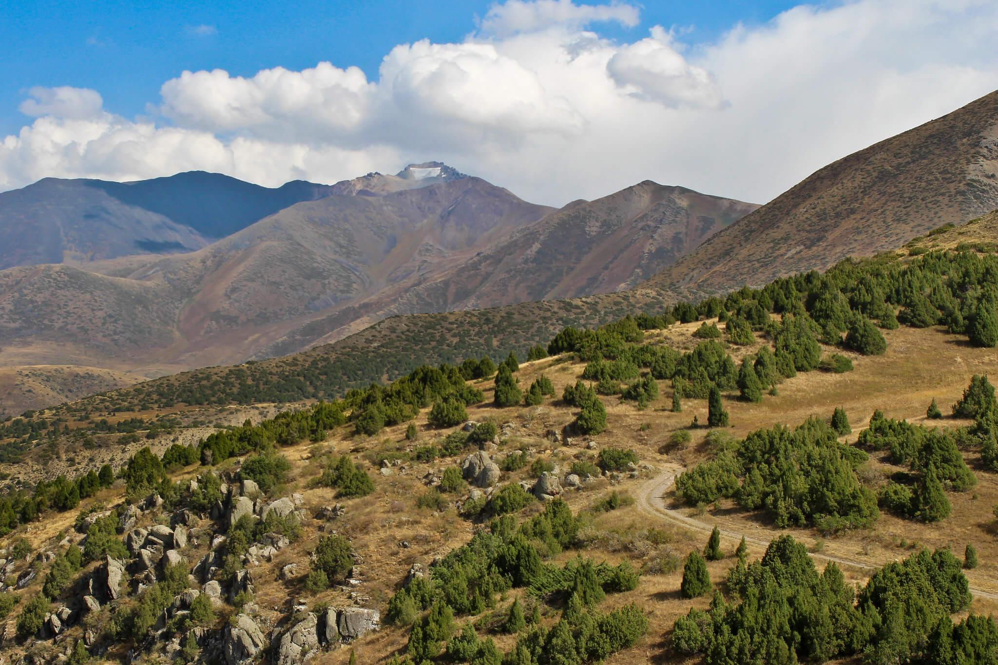 Aksu-Zhabagly National Reserve