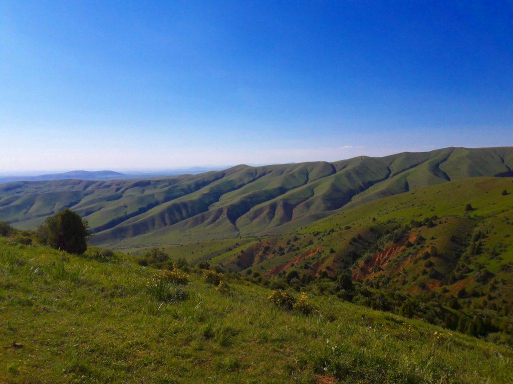 Info Shymkent - Sairam Ugam Nationalpark