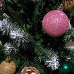 Info Shymkent - Happy New Year!