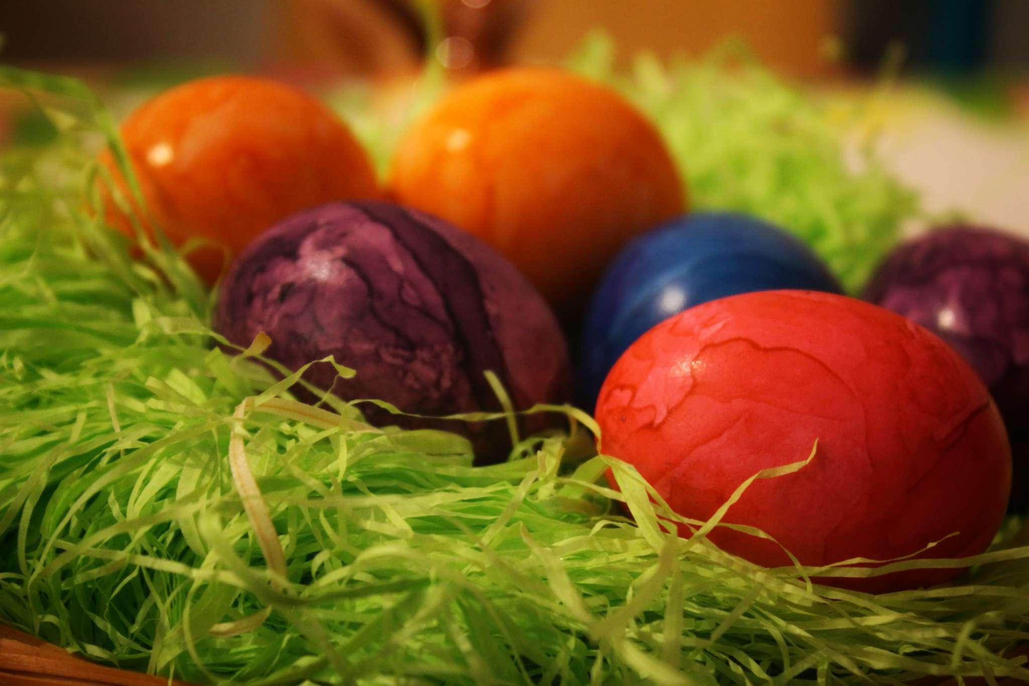 Info Shymkent - Colorfull easter eggs