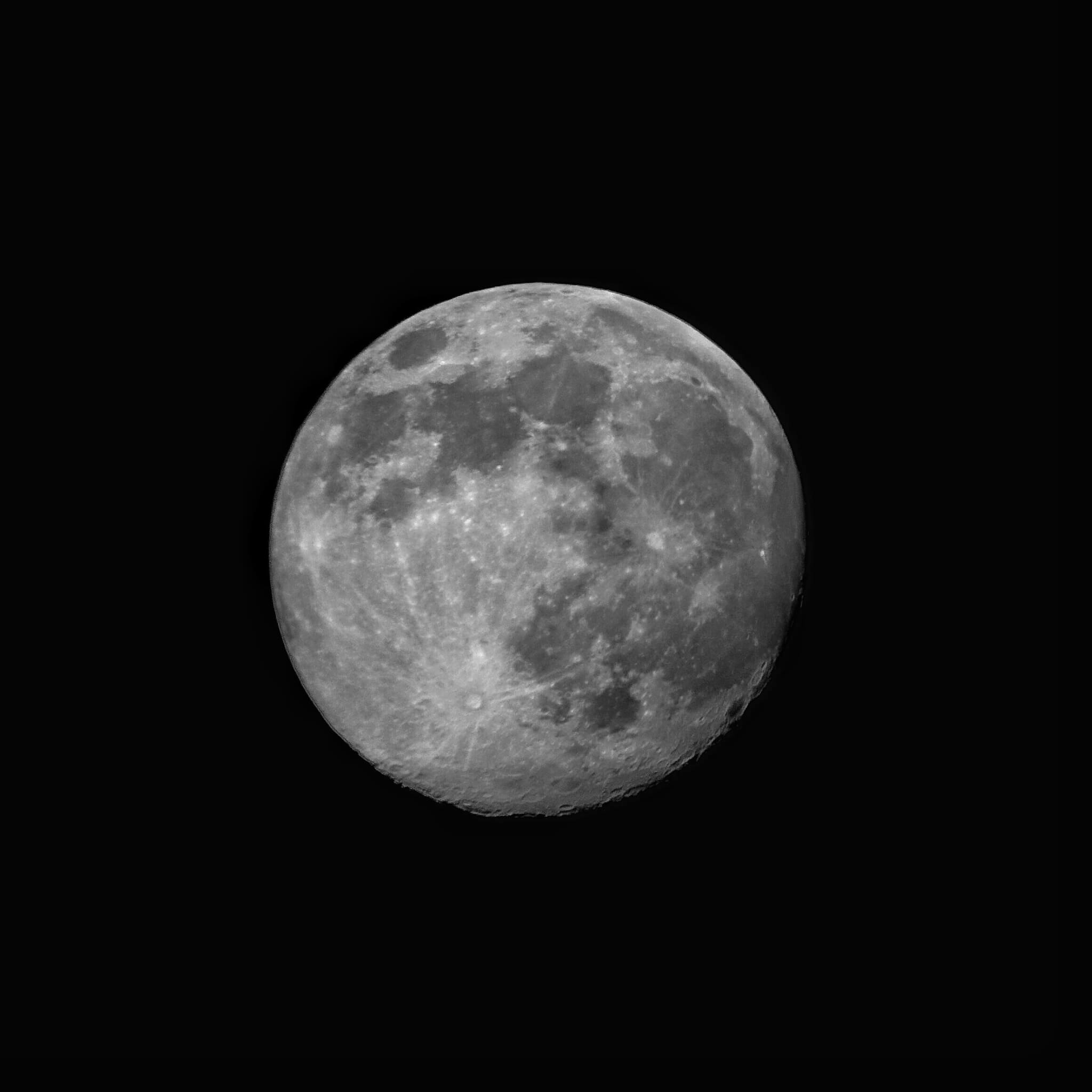 Info Shymkent - Lookup to the pink supermoon