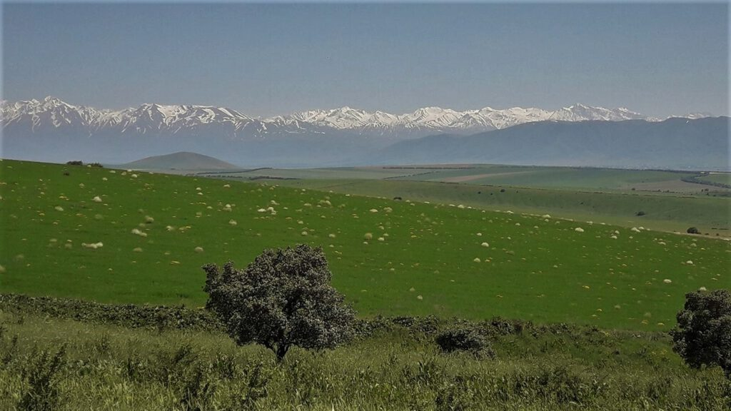 Info Shymkent - View of snow-capped peaks of Western Tian Shan Mountains (Image: Islam Kalani)
