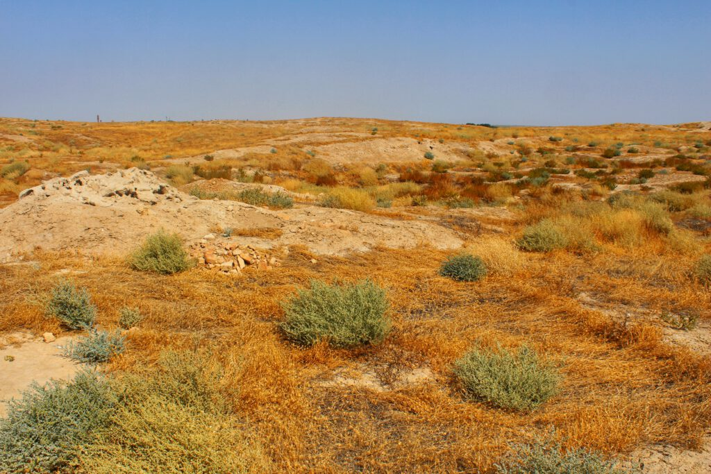 Info Shymkent - Most of the ancient city of Otrar Tube (Arab) in Kazakhstan is still not excavate.