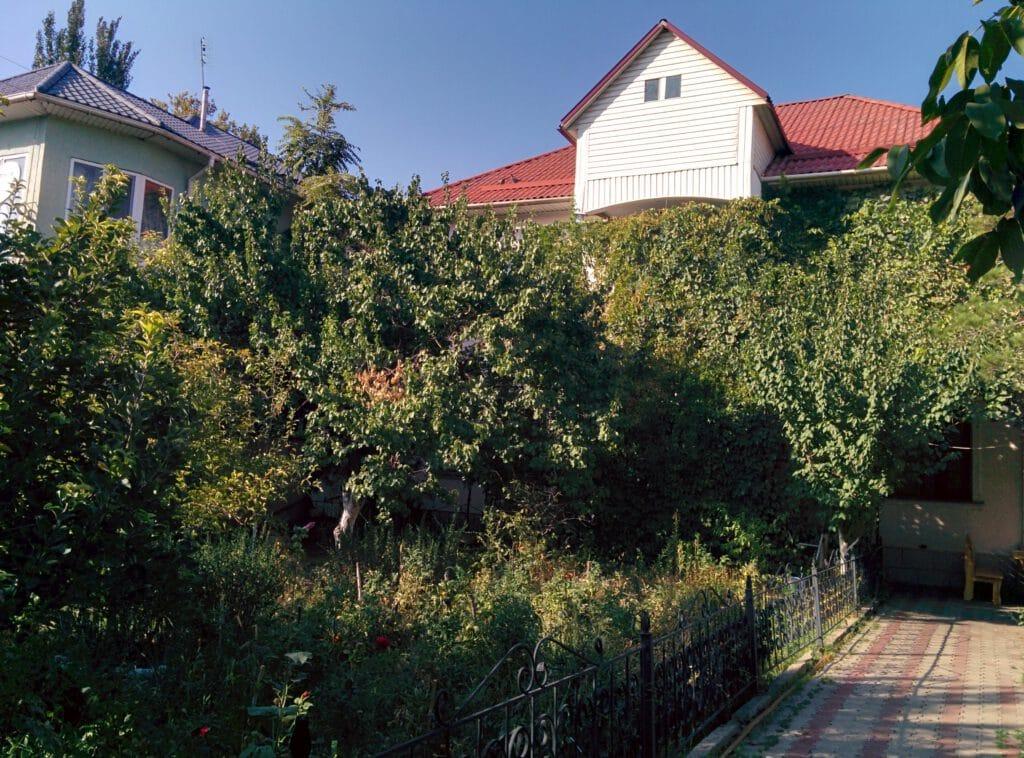 Info Shymkent - Where to sleep in Shymkent - ShymHostel